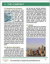 0000080314 Word Template - Page 3
