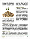 0000080314 Word Template - Page 4