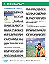 0000080315 Word Templates - Page 3