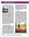 0000080318 Word Templates - Page 3