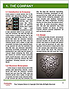 0000080319 Word Template - Page 3