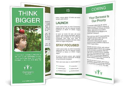 0000080320 Brochure Templates
