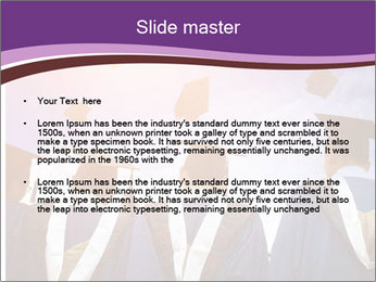 0000080324 PowerPoint Templates - Slide 2