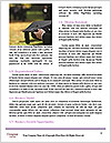 0000080324 Word Template - Page 4