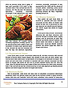 0000080329 Word Template - Page 4