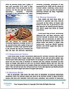 0000080332 Word Template - Page 4