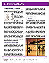 0000080333 Word Template - Page 3