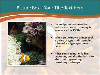 0000080337 PowerPoint Template - Slide 13