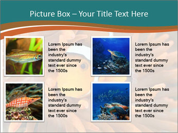 0000080337 PowerPoint Templates - Slide 14