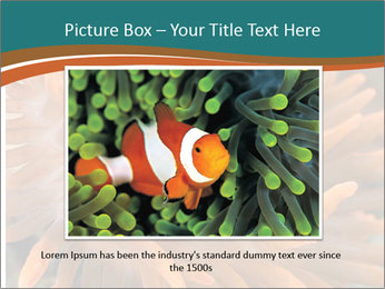 0000080337 PowerPoint Template - Slide 15