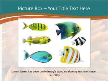 0000080337 PowerPoint Templates - Slide 16