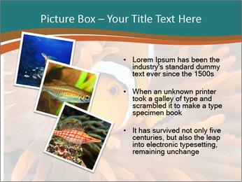 0000080337 PowerPoint Template - Slide 17