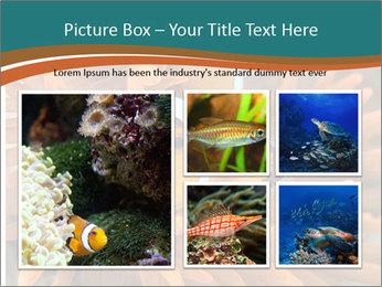 0000080337 PowerPoint Template - Slide 19