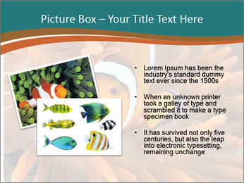 0000080337 PowerPoint Templates - Slide 20