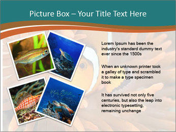 0000080337 PowerPoint Templates - Slide 23