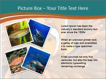 0000080337 PowerPoint Template - Slide 23