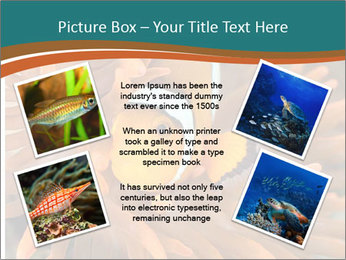 0000080337 PowerPoint Templates - Slide 24