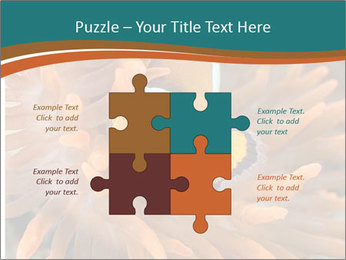 0000080337 PowerPoint Templates - Slide 43