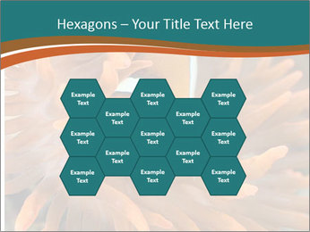 0000080337 PowerPoint Templates - Slide 44