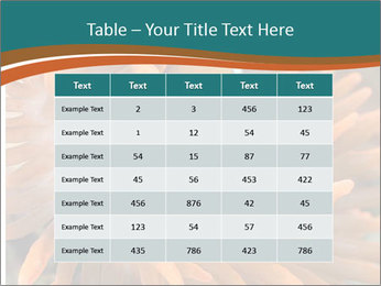 0000080337 PowerPoint Templates - Slide 55