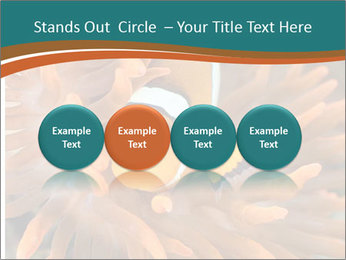 0000080337 PowerPoint Templates - Slide 76