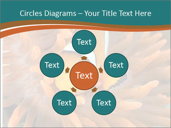 0000080337 PowerPoint Templates - Slide 78