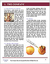 0000080343 Word Templates - Page 3