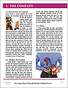 0000080362 Word Template - Page 3