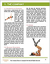 0000080366 Word Templates - Page 3