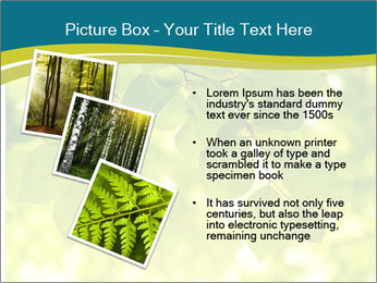 0000080367 PowerPoint Templates - Slide 17