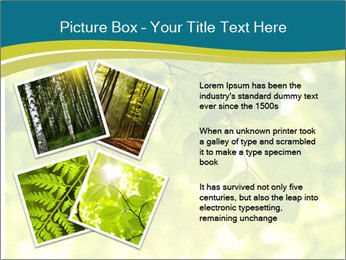 0000080367 PowerPoint Templates - Slide 23