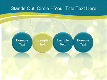 0000080367 PowerPoint Templates - Slide 76