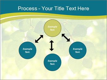 0000080367 PowerPoint Templates - Slide 91