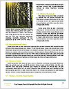 0000080367 Word Template - Page 4