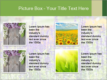 0000080377 PowerPoint Template - Slide 14