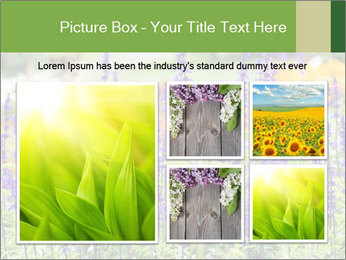 0000080377 PowerPoint Template - Slide 19