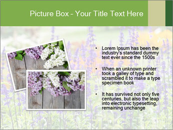 0000080377 PowerPoint Template - Slide 20