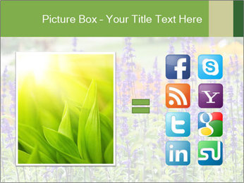 0000080377 PowerPoint Template - Slide 21