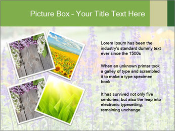 0000080377 PowerPoint Template - Slide 23