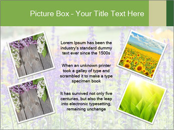 0000080377 PowerPoint Template - Slide 24