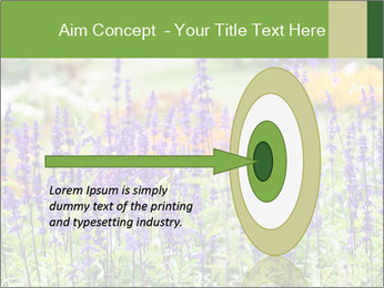 0000080377 PowerPoint Template - Slide 83