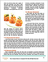 0000080380 Word Template - Page 4