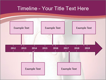 0000080384 PowerPoint Templates - Slide 28