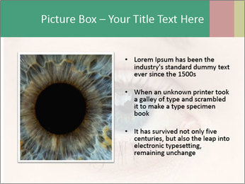 0000080388 PowerPoint Templates - Slide 13
