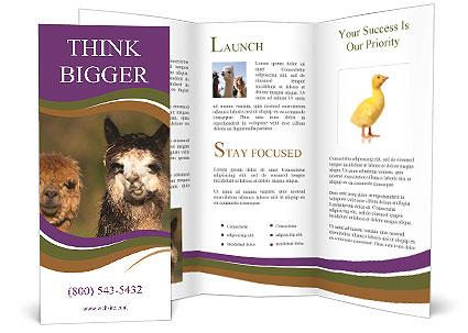 0000080389 Brochure Templates