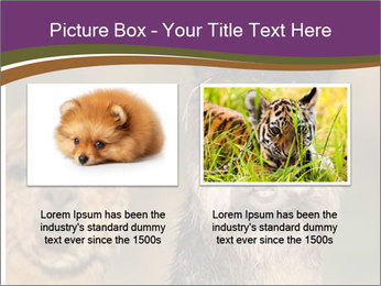 0000080389 PowerPoint Template - Slide 18