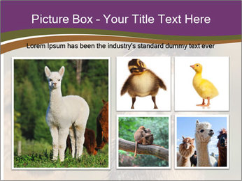 0000080389 PowerPoint Template - Slide 19