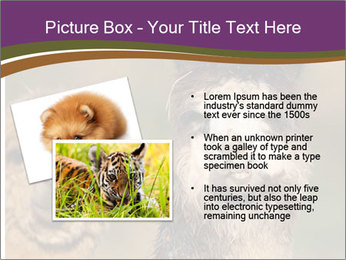 0000080389 PowerPoint Template - Slide 20
