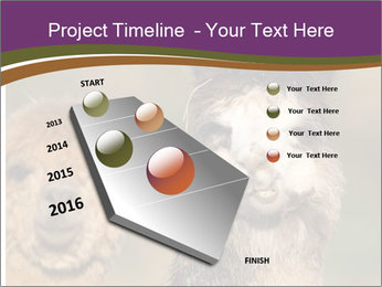 0000080389 PowerPoint Template - Slide 26