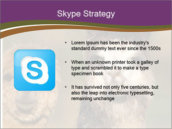 0000080389 PowerPoint Template - Slide 8